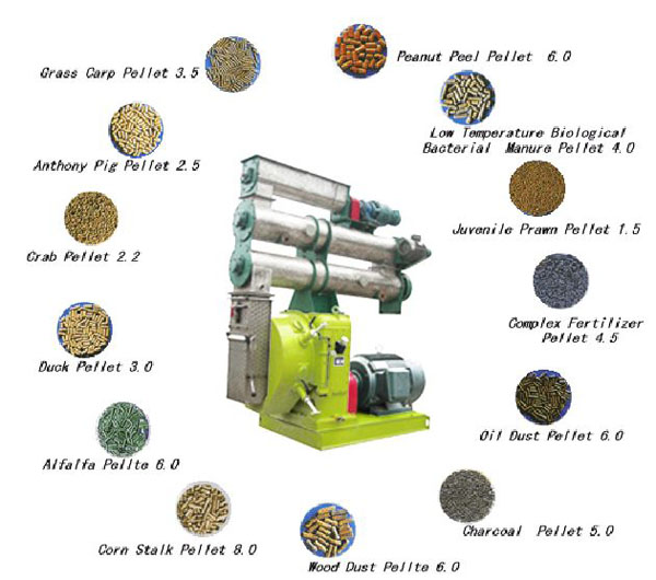 feed pellet mill industry