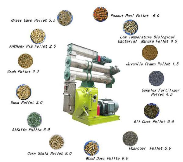 feed pellet mill industry