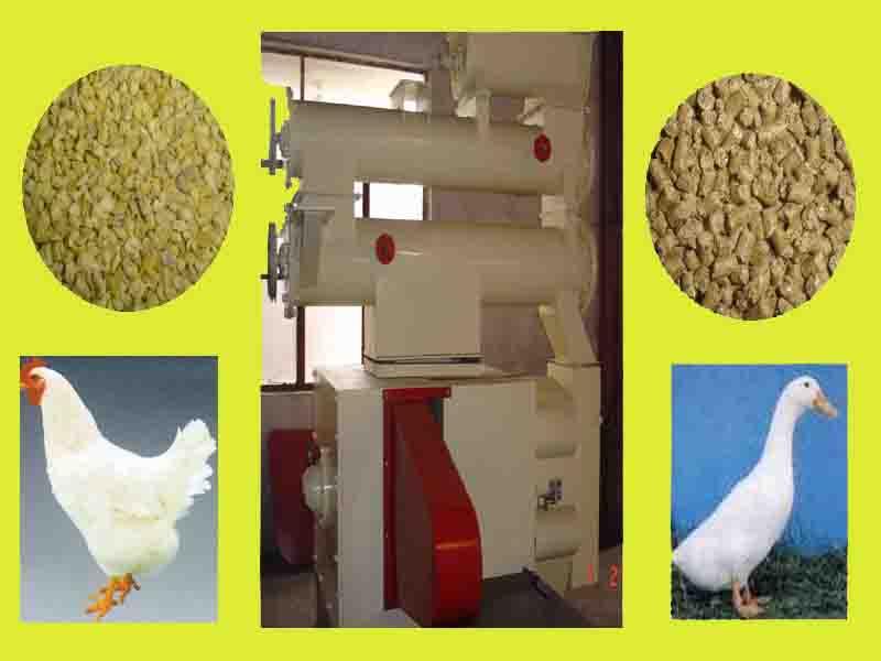 feed pellet mills